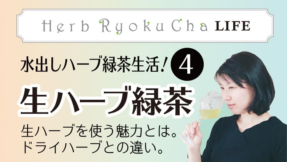 4.生ハーブ緑茶生活